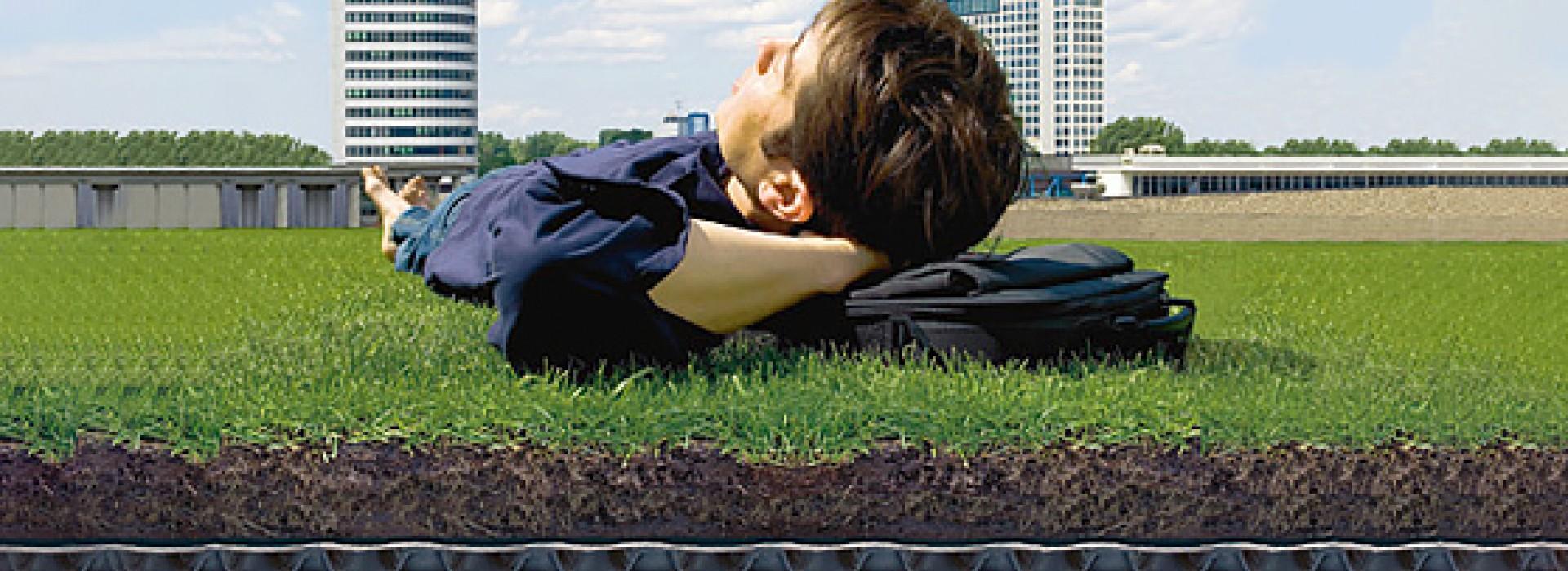 Системи за зелени покриви