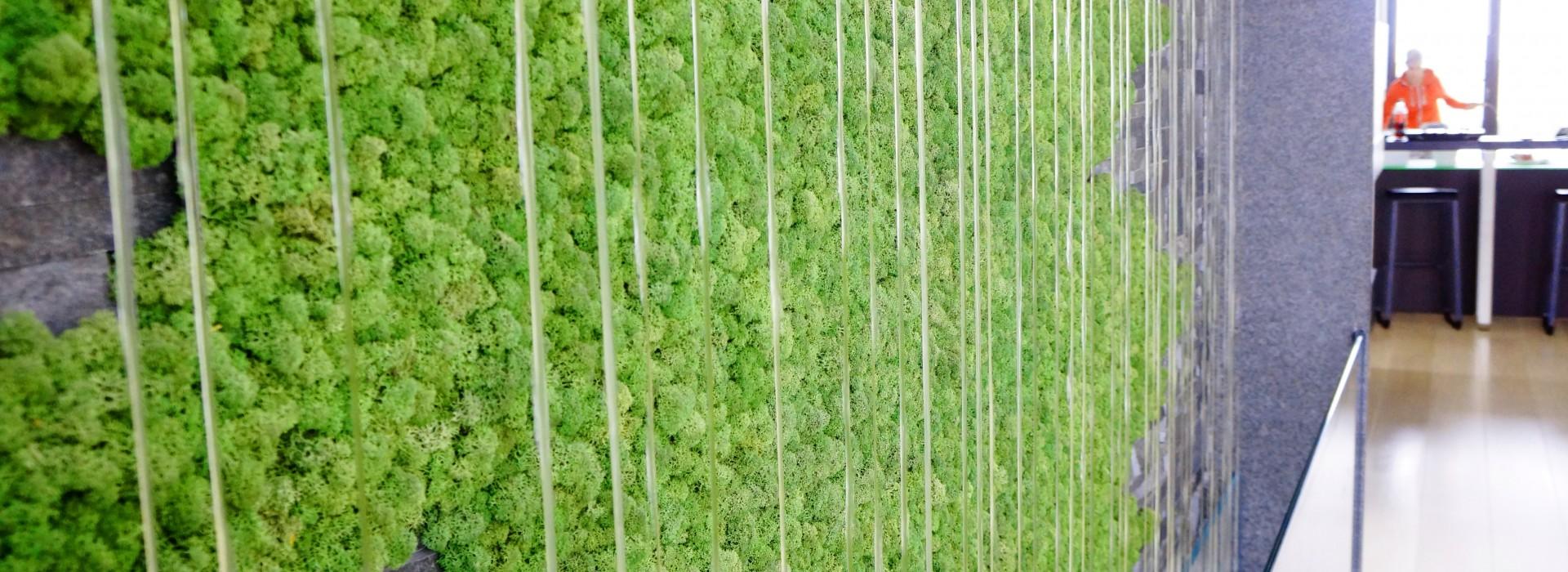 Зелена стена с fioraMOSS и воден ефект