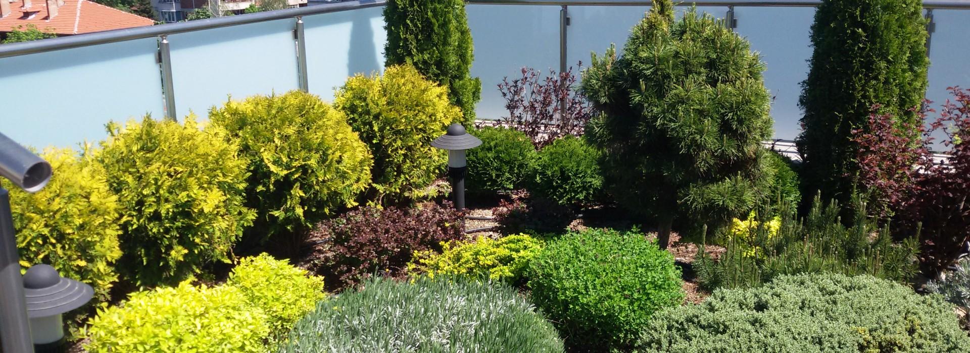 Как да превърнем покрива в градина?