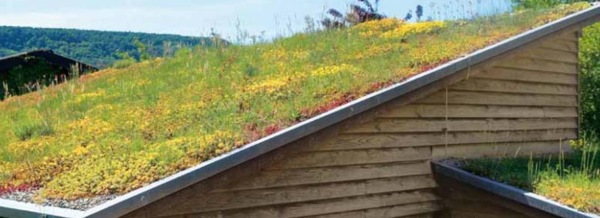 Наклонени зелени покриви