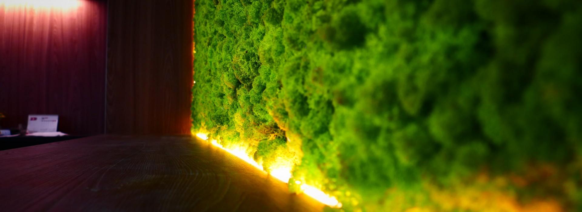 Зелени стени от скандинавски мъх за Баня Стил
