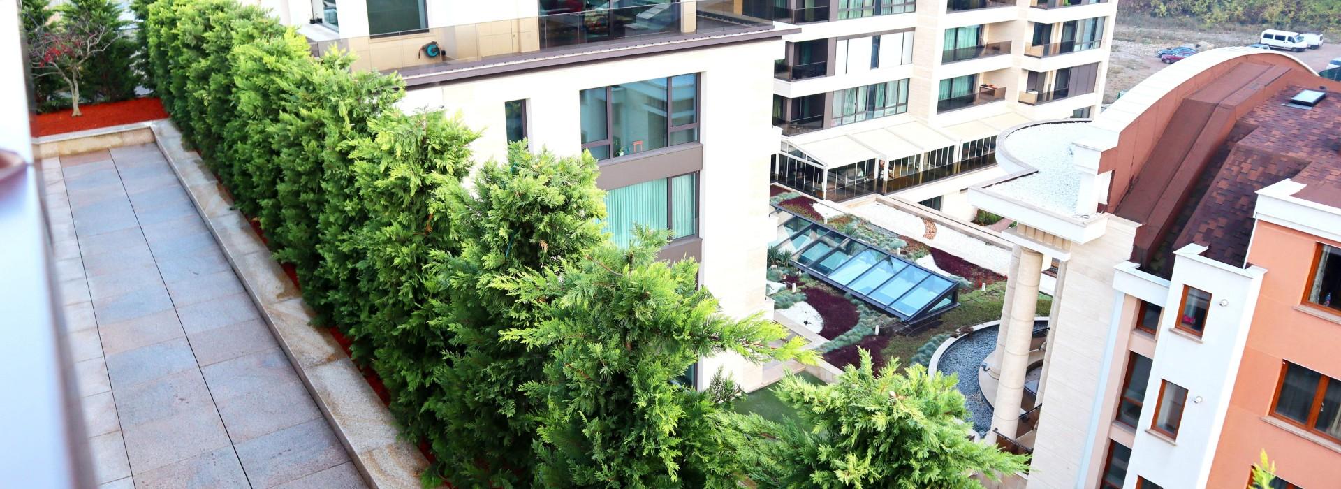 Озеленяване на покривна тераса , кв. Бояна