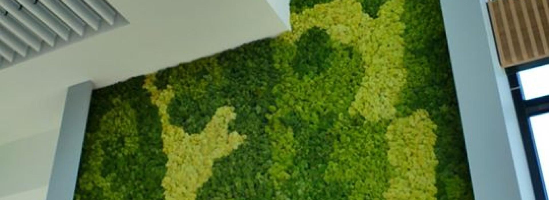 Зелена стена от скандинавски мъх за ABB, гр. Севлиево