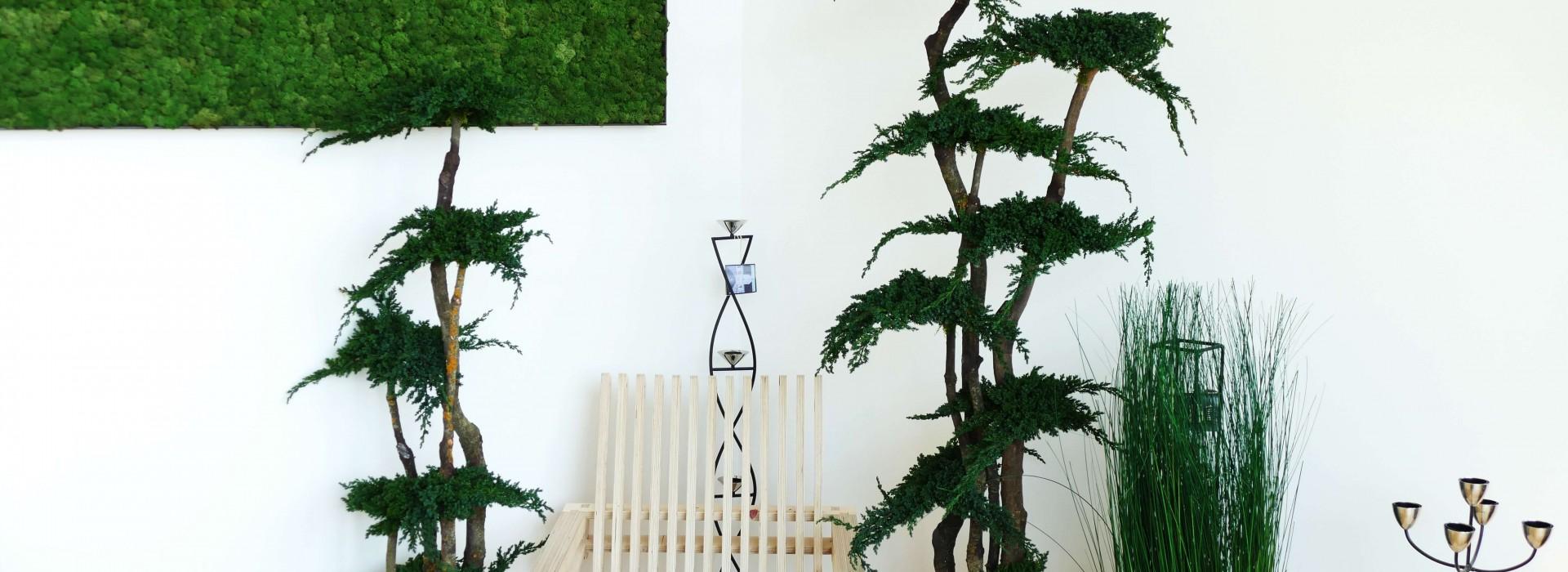 Showroom Fiora Design