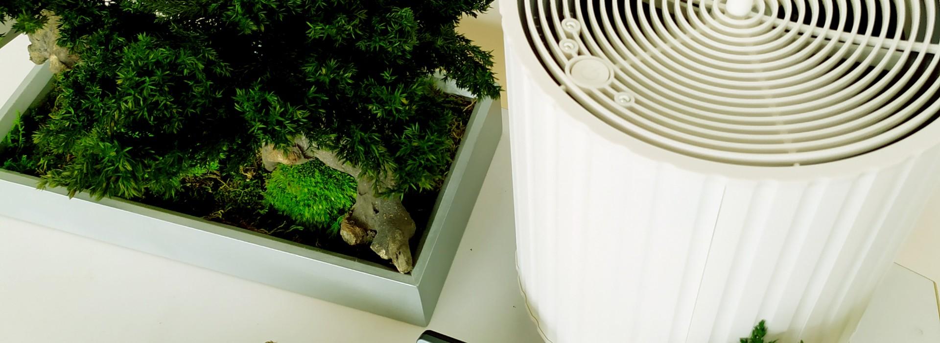 Зелените стени като метод за подобряване на качеството на въздуха.