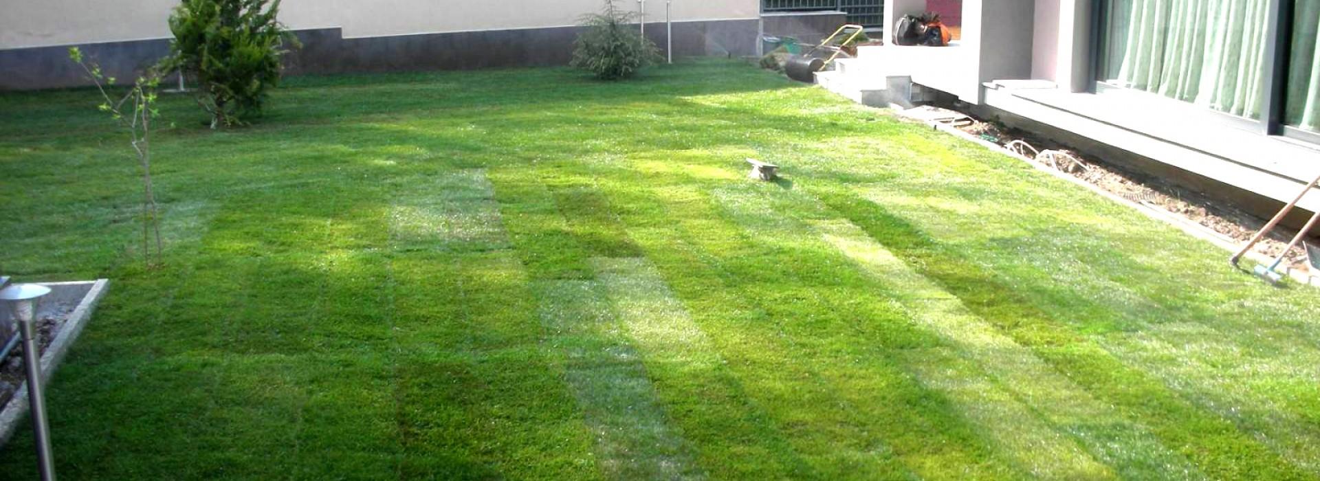 Озеленяване на двор , частен обект