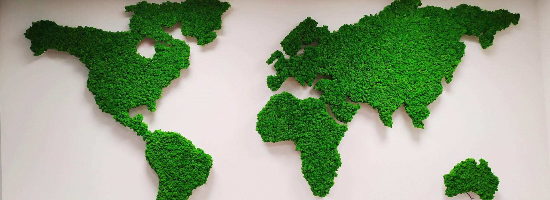 Карта на света от скандинавски мъх и ефектно осветление за EGT